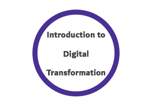 DT 300x210 - مقدمة في التحول الرقمي
