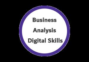 digital skills 300x210 - المهارات الرقمية لمحلل الأعمال PADS