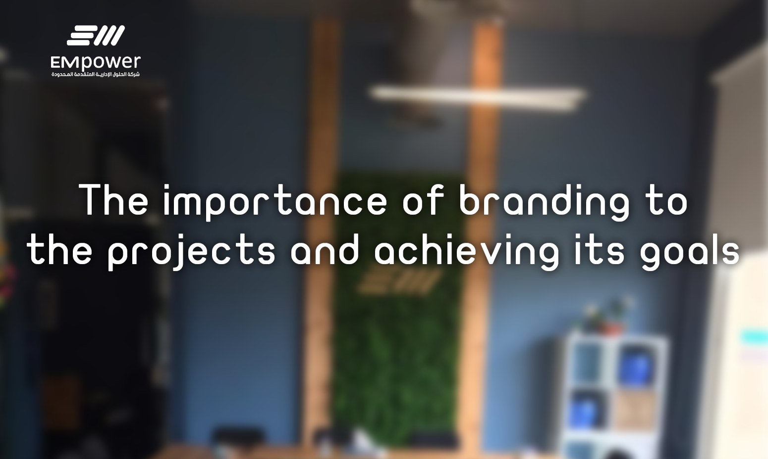 3 - أهمية العلامة التجارية للمشروع وتحقيق أهدافه